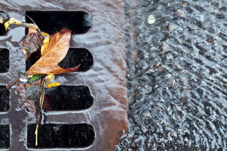 Signs Your Storm Drain Needs Cleaning